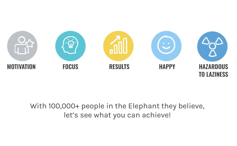 Amazon.com: Planificador Simple Elephant, la mejor agenda ...