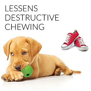 reduces destructive chewing and dog anxiety and boredom