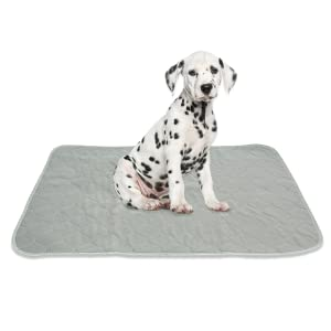 rocket rex pee wee-wee potty pads mat disposable dog puppy potty money waste crate kennel whelping
