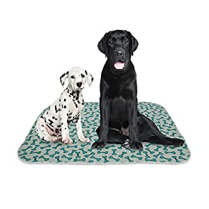 rocket rex pee dog pad puppy potty wee-wee disposable washable reusable waterproof training crate