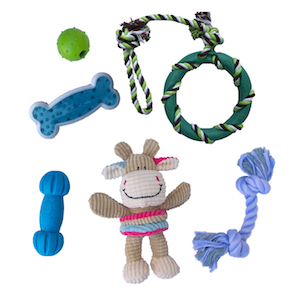 rocket and rex 6 pack small dog and puppy chew toys are a durable, premium variety pack