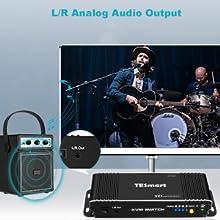 L/R audio output