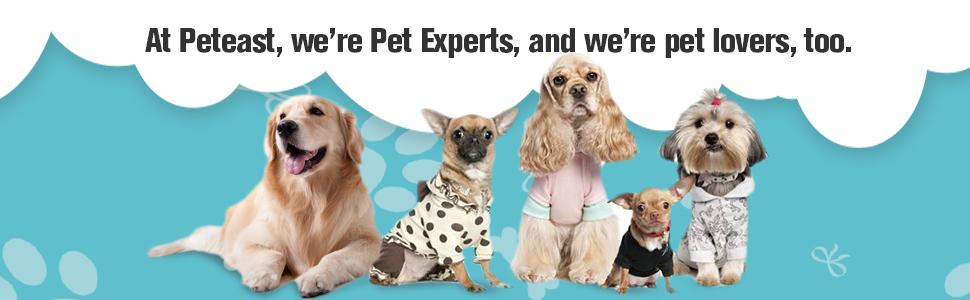 Amazon.com: Peteast – Kit de correa para perro doble ...