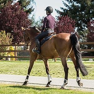 horseback riding horses polo pants apparel club sport sportswear