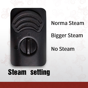 Steam settings