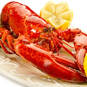 Amazon Com 10 Pack Fresh Frozen Lobster Tails From Maine Best With Lobster Clasp Crab Leg Cracker Tools Lobster Pics Seafood Scissor Forks Antibiotic Free Get Maine Lobster