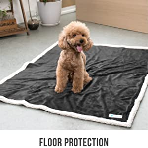 dog pet floor protection from incontinence and liquids