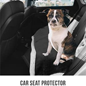 pet car seat protection and road trip