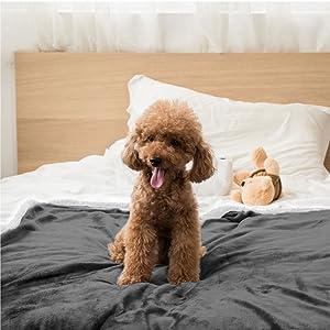 waterproof pet blanket furniture protection