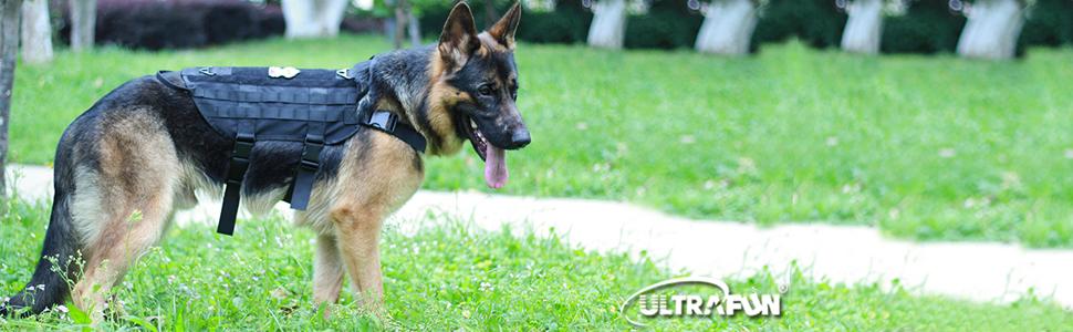 Tactical Dog Molle Vest