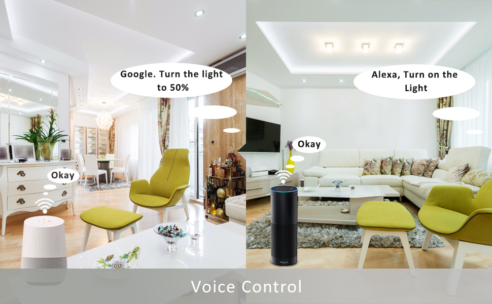 Alexa and Google Control