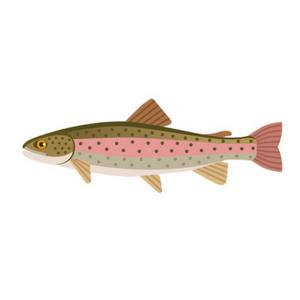 Trout Fishing Hooks