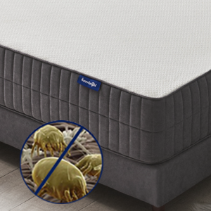Hypoallergenic & Breathable Cover for best sleep