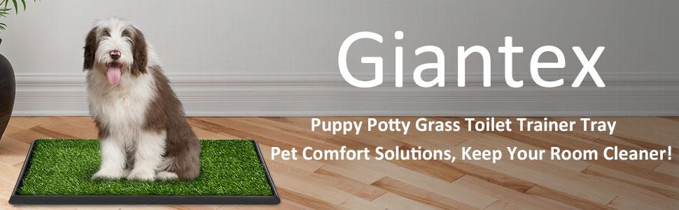 Dog Puppy Pet Potty Pad