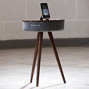 speaker charger