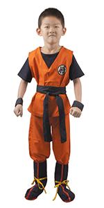 Boy's Goku Costume