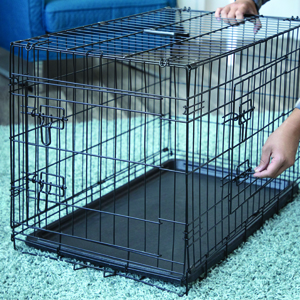 Amazon Com Dog Crates For Xx Large Dogs Xxl Dog Crate
