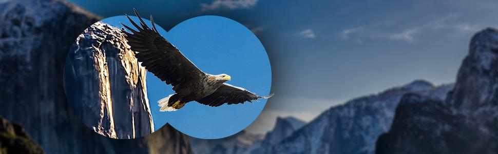 Binóculos 10x42, binóculos de observação de pássaros, binóculos à prova d'água, ótica de envergadura binóculos de alta potência