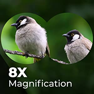 8x magnification binoculars
