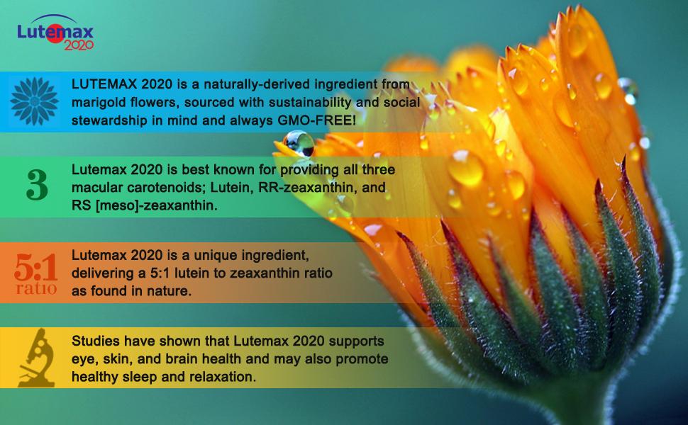 使用LUTEMAX的醫師選擇自然視覺支持