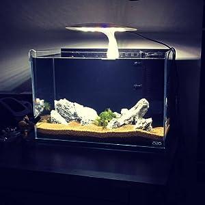 amazon com hipargero led aquarium light 12w aquarium led