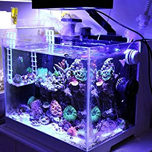 amazon com hipargero led aquarium light aquarium led lights 30w