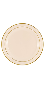 disposable plastic dinner plate party package
