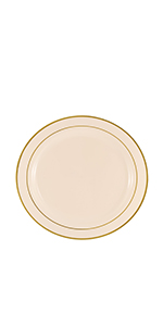 disposable plastic salad dessert plate party package