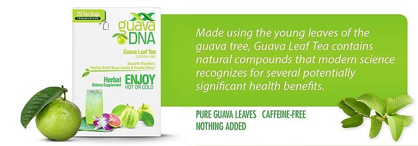 Guayaba 1bolsa de té: Amazon.com: Grocery ...