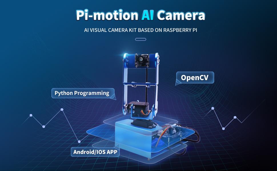 raspberry pi robot camera