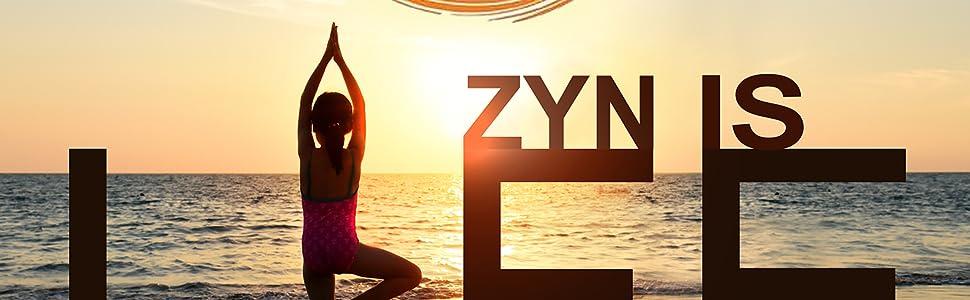 ZYN - with CURCUMIN + PIPERINE (Mango Lychee) Low Sugar - Anti Inflammatory - AmaZYN taste!