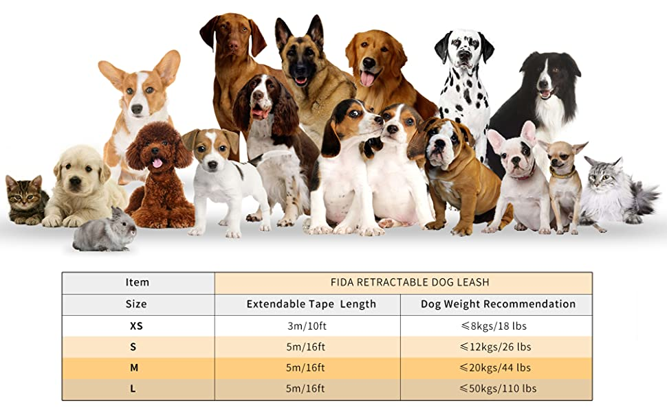 all size of dogs cats small animals