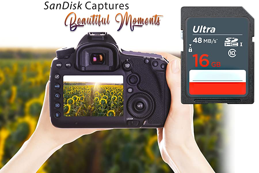 Amazon.com: SanDisk 16 GB Ultra clase 10 SDHC UHS-I tarjeta ...