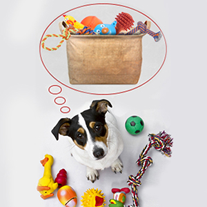 Pet storage basket, baskets, bins, bin, toy storage for kids, jute baskets, canvas basket, toy box