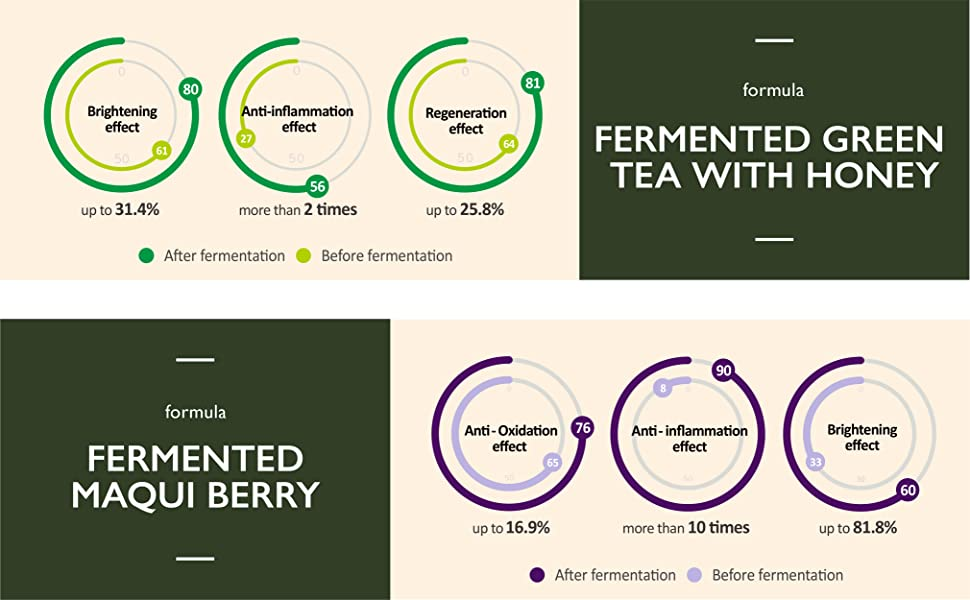 fermented green tea with honey, fermented maqui berry
