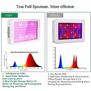 Full Spectrum,Most Sunlike