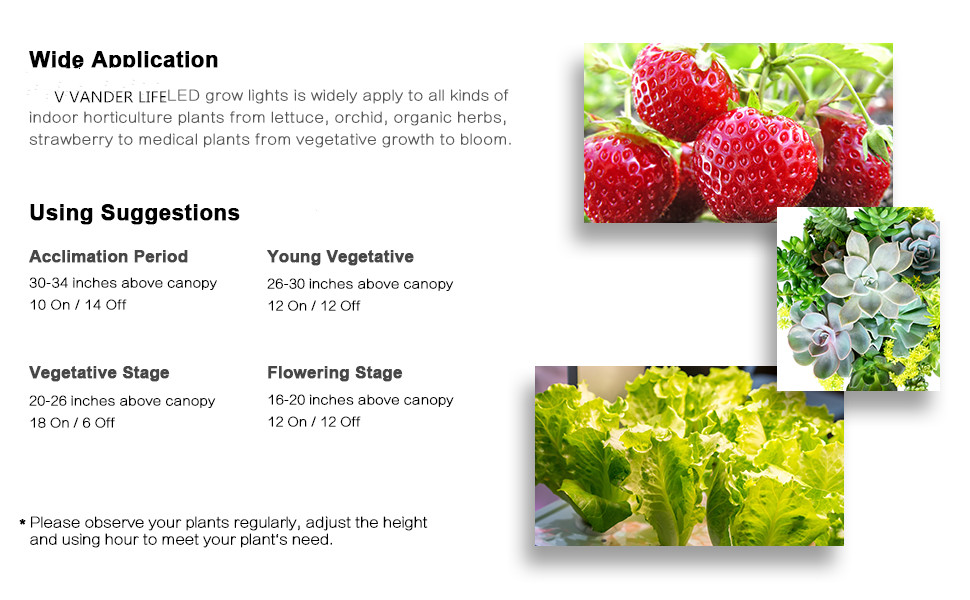 Using Suggestion of our grow light