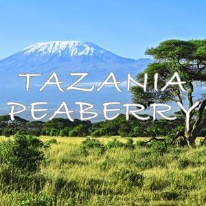 Tanzania peaberry coffee beans