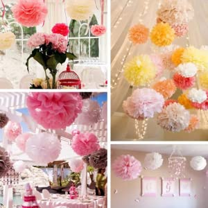 Amazon bekith 30 piece 10 inch tissue paper pom poms flower hanging flower ball for baby shower decorations wedding decor birthday party celebration mightylinksfo