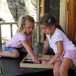 Shut the box wooden game for learning addition pub games hardwood quality