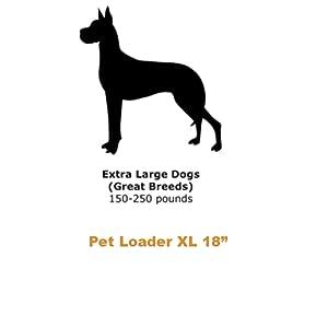 extra large dog sizing