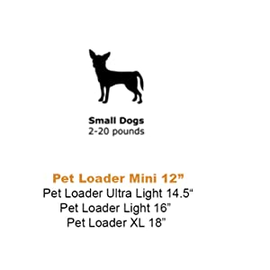 sizing for small dog