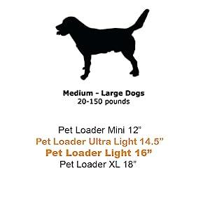 medium to large dog sizing
