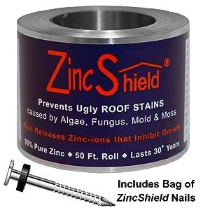 Amazon.com: zincshield Pure Tiras de zinc y uñas kit de ...
