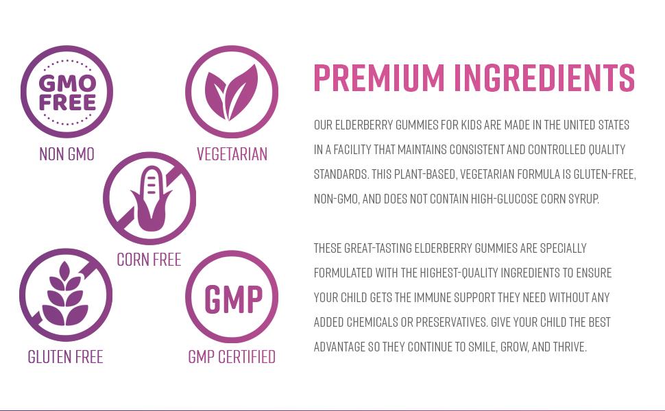 non gmo natural gluten free