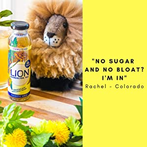 lion tea dandelion detox digestion aid bloat relief antioxidant dandelion tea organic