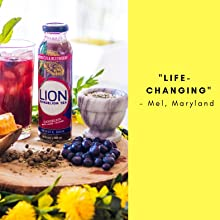 lion tea dandelion drink beverage whole plant blueberry hibiscus