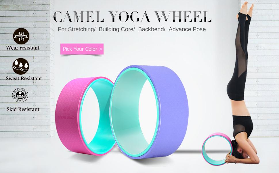Amazon.com : Camel 13