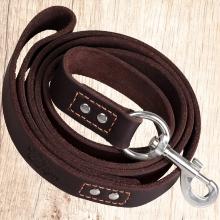 Leather Dog Leash 6ft