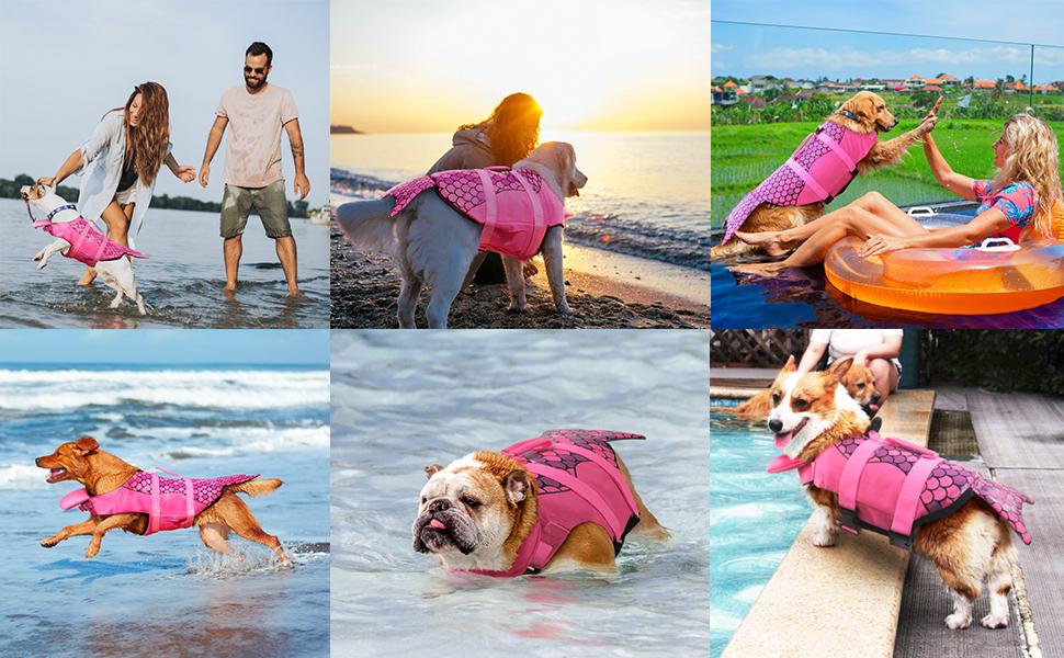 Amazon.com: PETCEE Chaleco salvavidas para perro con gran ...